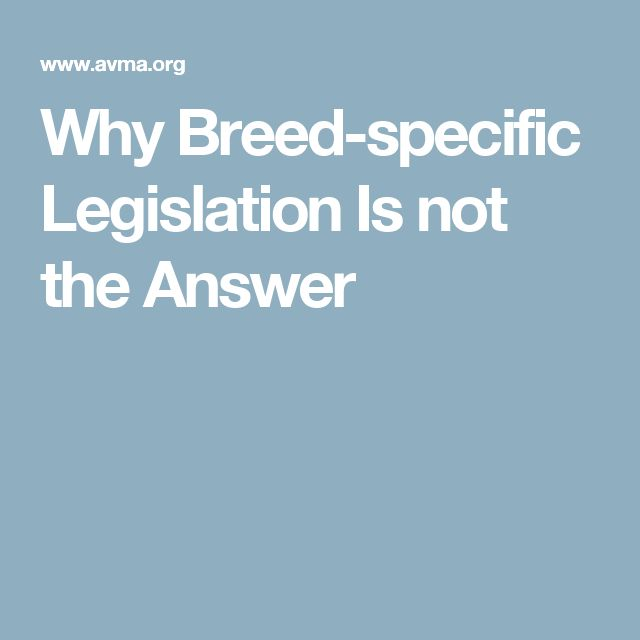 Why Breed-specific Legislation Is not the Answer