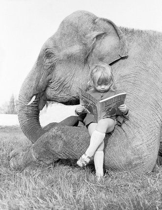 John Drysdale (), British / photograph of girl perched on elephant's leg reading a book, c. 1950-1970, UK /