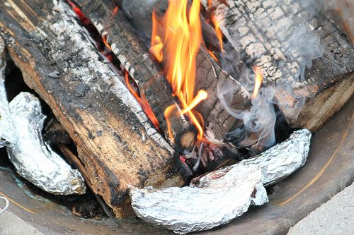 Campfire Bananas!!  Take a banana, peel just one strip down, cut a groove in the banana, fill the groove with chocolate chips, mini marshmallows, peanut butter etc.. then put the peel back in place, wrap with tinfoil and put in the fire until its an ooey gooey treat!