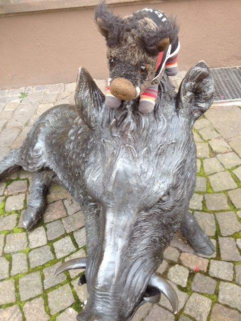 On the prowl in Trier, Germany getting the wild Wildschwein in line!