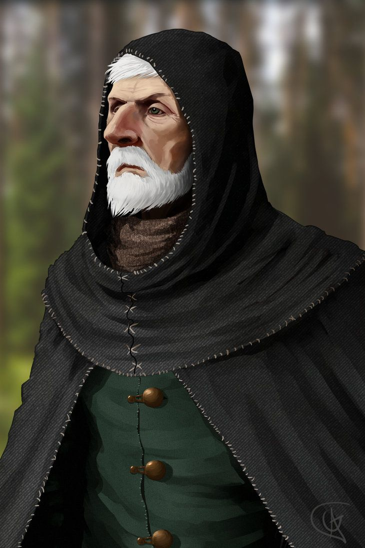The Wardstone Chronicles By Geezyart On Deviantart