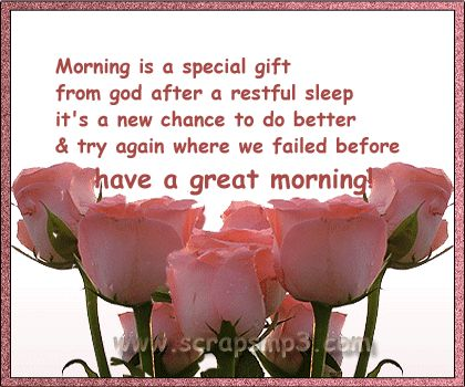 morning good morning rise and shine