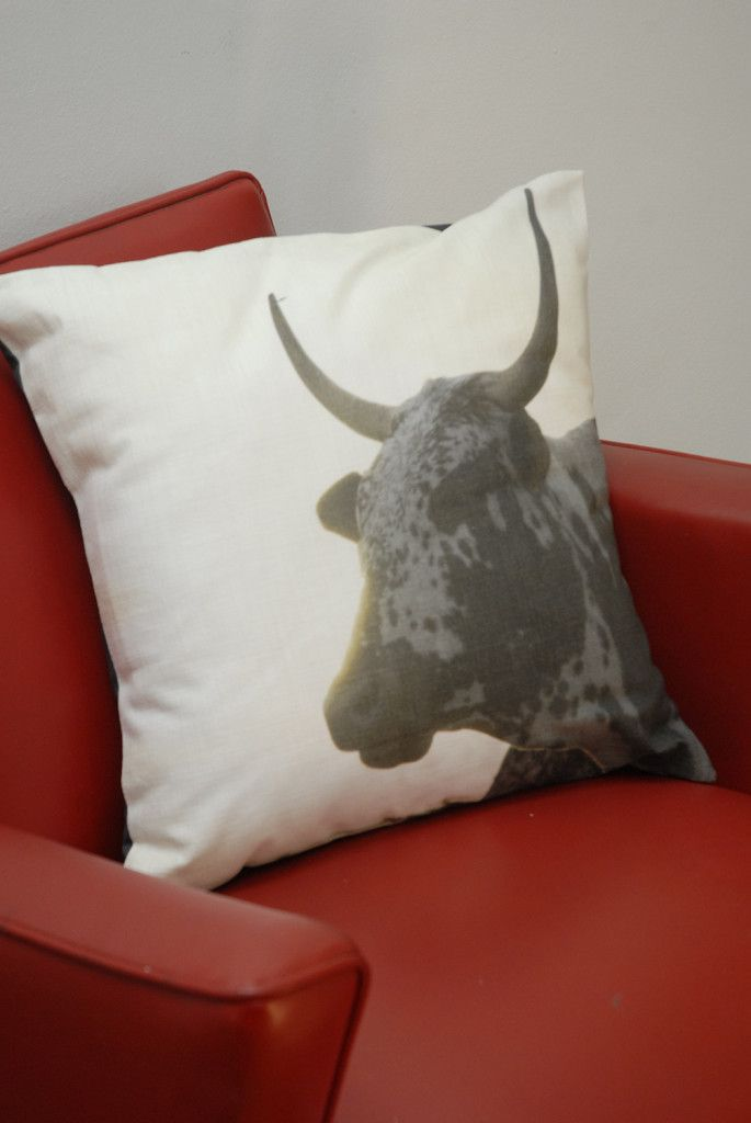 Nguni dawn cushion cover for your Man Cave  #projectza #capetown #southafrica