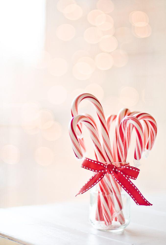 Candy Cane Brigadeiro — Lulu's Sweet Secrets                                                                                                                                                                                 Mo