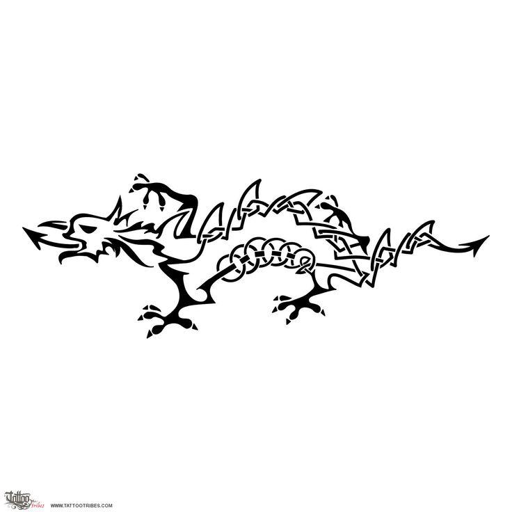 Drago+gallese