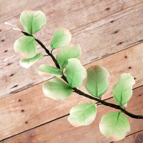 Eucalyptus Leaves sugarflowers perfect for cake decorating fondant cakes and pairing with sugarflowers.   CaljavaOnline.com #caljava #sugarflower