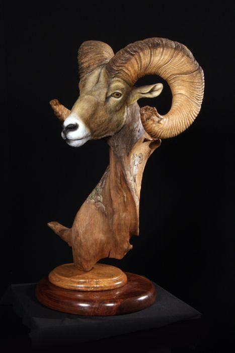 The Wildlife Gallery Wholesale Fur Dressing and Custom Taxidermy Studio: