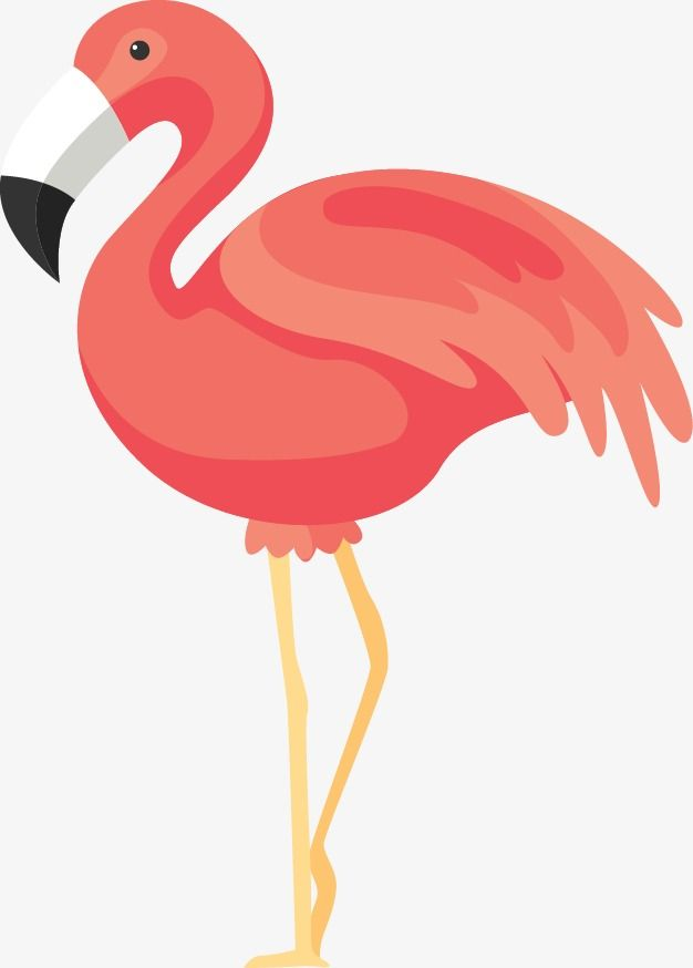 Flamingos Flamingo Clipart Cartoon Png Transparent Clipart Image And Psd File For Free Download Cartoons Png Flamingo Clip Art