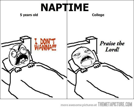 This will be me next year.: Laughing, Colleges, Truestori, Truths, Funny Stuff, So True, Naps Time, Funnystuff, True Stories