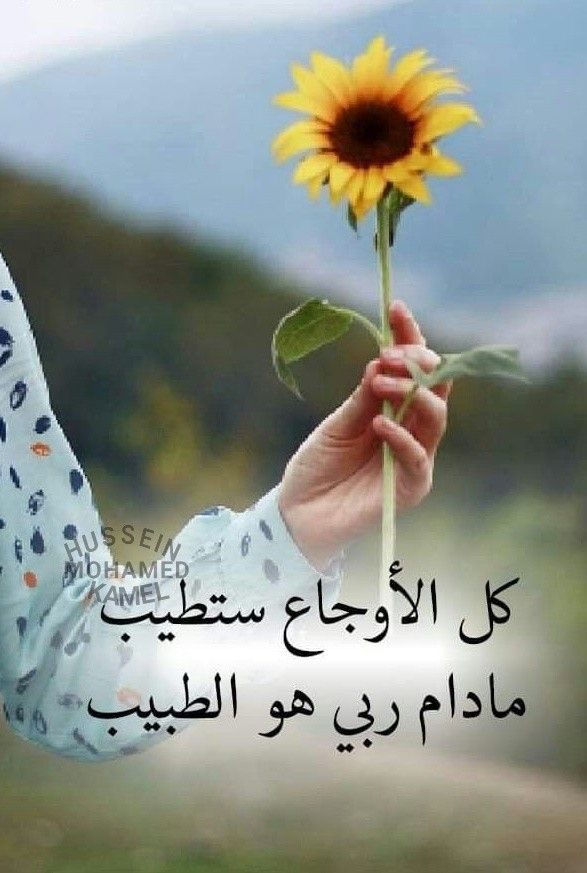 Pin By زهرا On الله Life Quotes Inspirational Quotes Funny Pictures