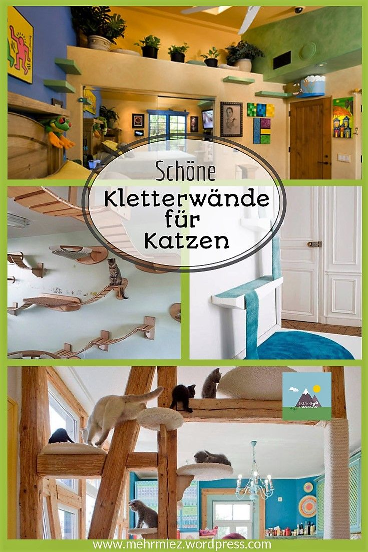 die besten 17 ideen zu katzen kletterwand auf pinterest. Black Bedroom Furniture Sets. Home Design Ideas