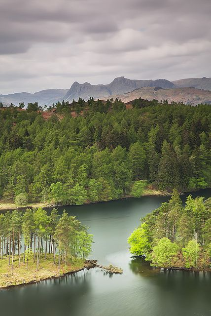 Tarn Hows in the Lake District. Our tips for 25 fun things to do in England: http://www.europealacarte.co.uk/blog/2011/08/18/what-to-do-england/