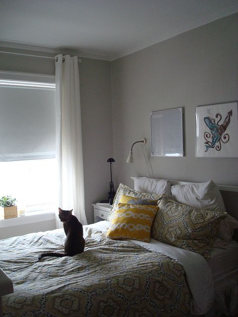 43 Best Images About Gray And Beige Walls On Pinterest
