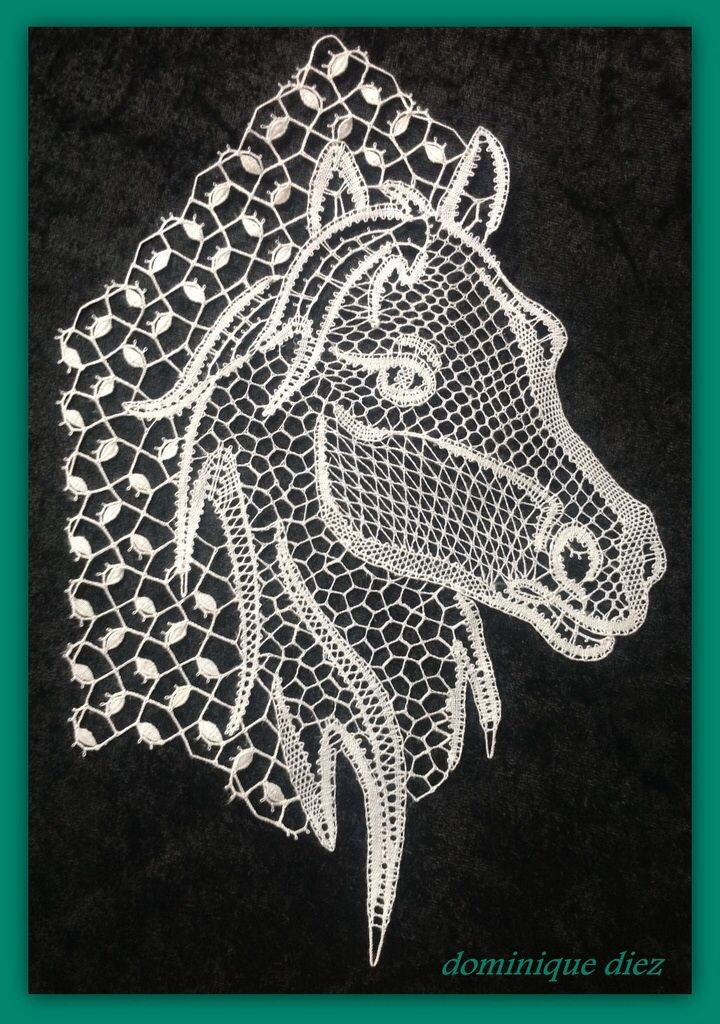 hlava koňa