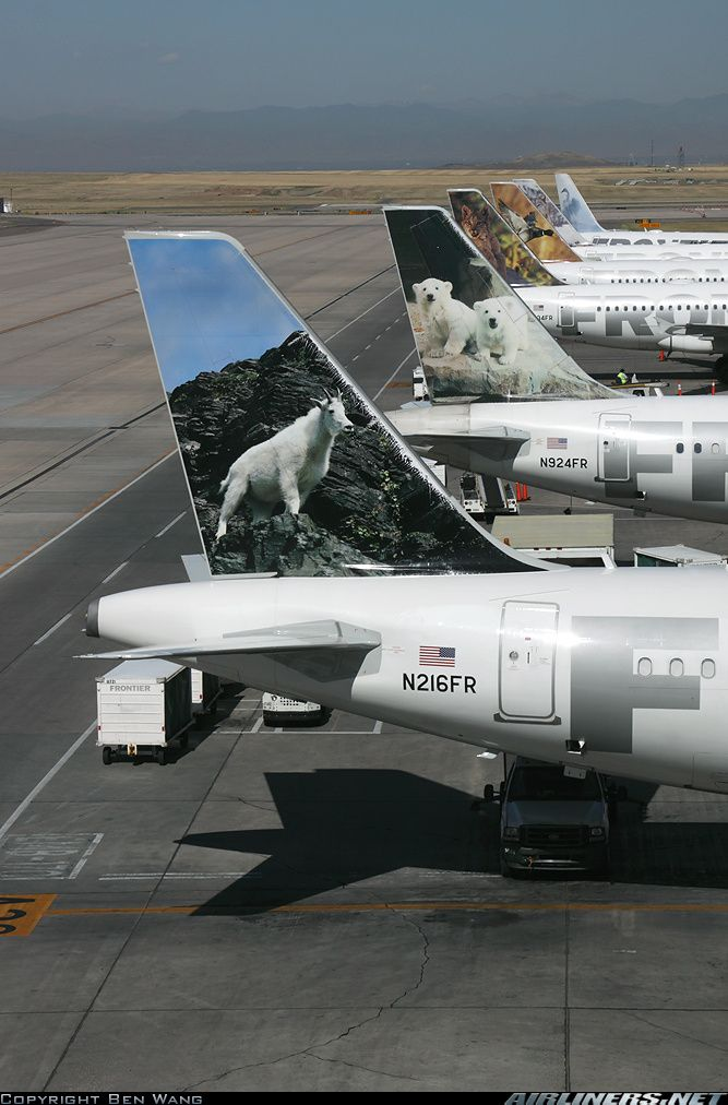Frontier Airbus planes at DIA