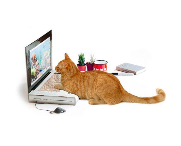 A cat-scratch pad that looks like a laptop.