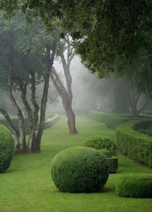 Gardening for Backyards
