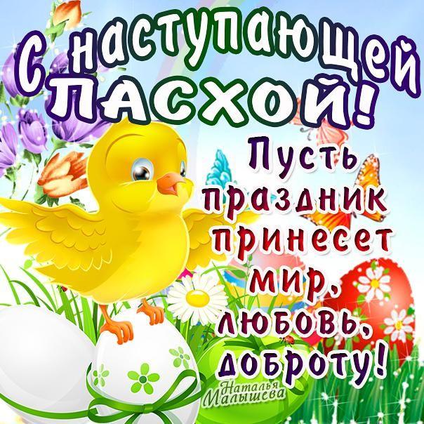 cZVdQcFyhUs.jpg (604×604)
