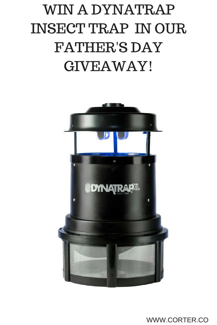 Come and win a DynaTrap Insect Trap during our Father's Day Giveaway!