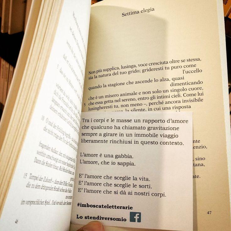 Un po' di Imboscate letterarie triestine arrivarono alla Feltrinelli. Qui nella foto tra le pagine di ''Elegie duinesi'' di Rainer Maria Rilke.