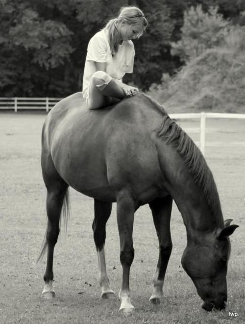 """There is something about the outside of a horse that is good for the inside of a person."" ~Winston Churchill"