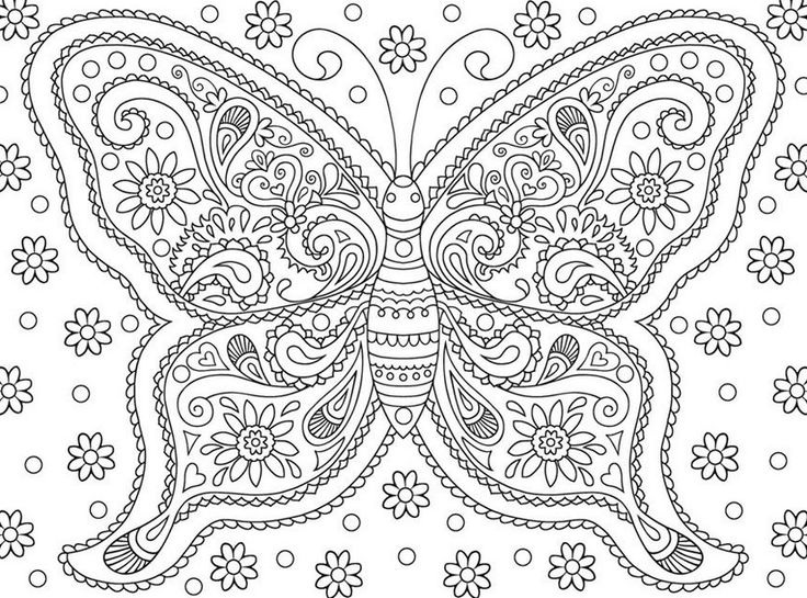 100 free coloring pages for adults and children Adult coloring page Butterflies