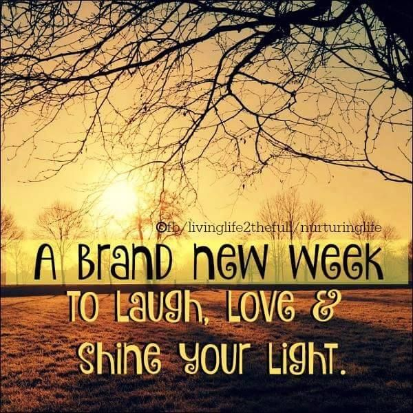 A brand new week to laugh, love & shine your light #goodweek dawn winter trees sunlight week quotes new week