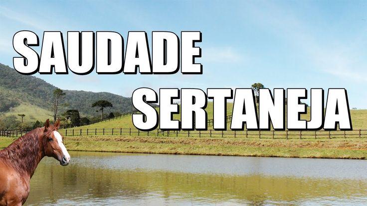 Seleção Sertaneja Romântica Grandes Sucessos Dos Anos 90