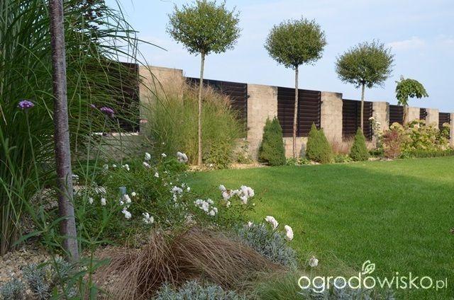Jak zamienić glinę w wymarzony skrawek Ziemi. - strona 393 - Forum ogrodnicze - Ogrodowisko