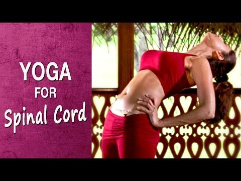 Top 10 Shilpa Shetty Yoga Videos For A Complete Body Workout