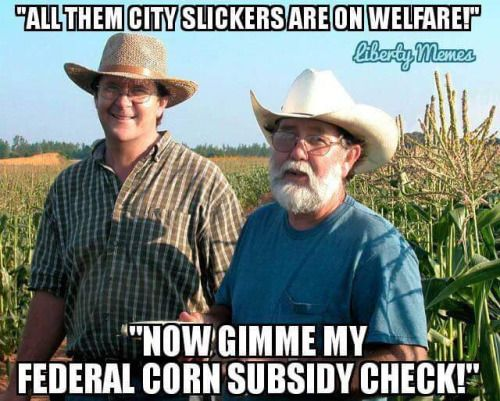 "Corporate ""farmers"" include many of our representatives and senators who own and lease land for farming, then collect subsidies."