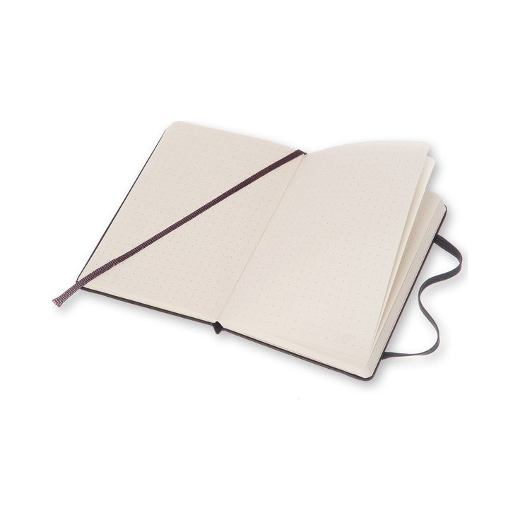 Classic large Moleskine dot grid notebook
