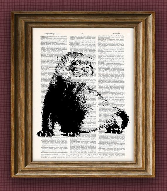 cool FERRET beautifully upcycled vintage by collageOrama on Etsy, $7.99