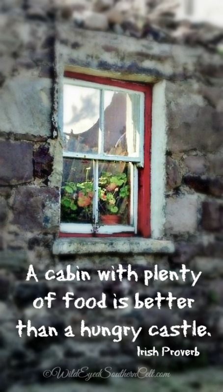 A cabin with plenty of food is better than a hungry castle.  Irish Proverb