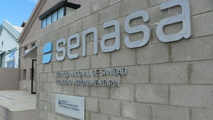 #El Senasa reforzó las medidas para evitar el ingreso de un virus porcino detectado en Uruguay - La Gaceta Tucumán: La Gaceta Tucumán El…