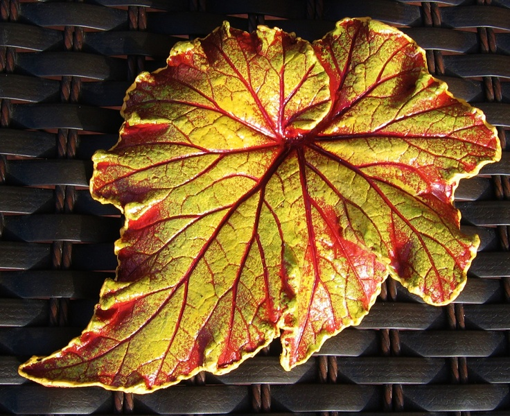 Raspberry Swirl Begonia leaf casting with FREE display stand. $14.00, via Etsy.