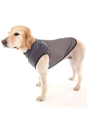This Insect Shield Dog T-shirt will keep the bugs away, and keep Fido a happy camper!