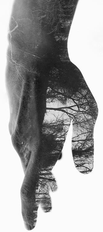 The mind's subjugation of the body can be another ploy of the ego to keep us divided against the Self! Ego thrives on oppositions, so defeat of oppositions is the true letting go of ego.-David Richo, P.h.D (☆ By Antonio Mora ☆)