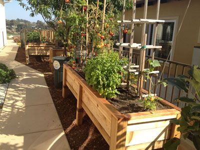 Best 20 Raised bed garden design ideas on Pinterest Raised