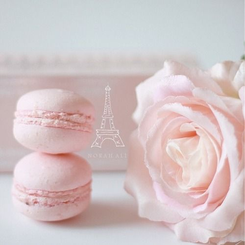 Macroons and flowers. Perfect. Xoxo