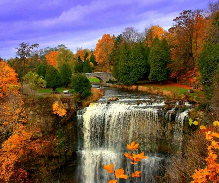 74 Best Fall's Beautiful Colors & Scenery Images On