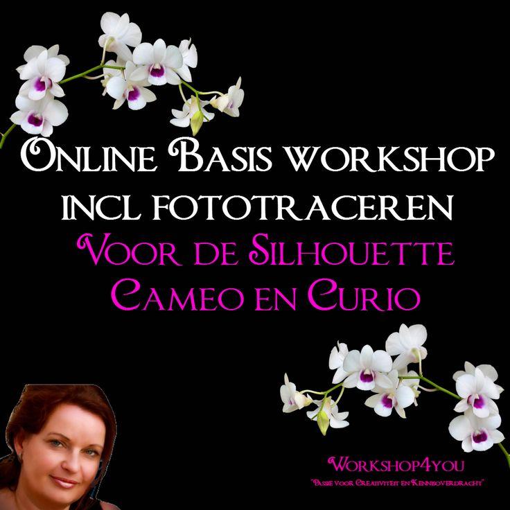 info voor de online basis workshop inclusief fototraceren voor de Silhouette Cameo en Curio