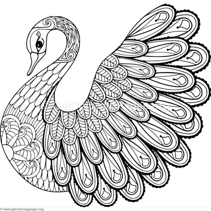 Free to download Zentangle Swan Coloring Pages coloring