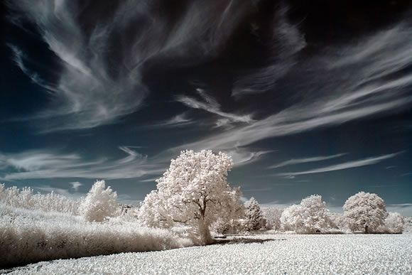 winter.... cold winter: Cold Day, Winter Wonderland, Frostings Ice, So Pretty, Cold Winter, Amazing Places, Ir Photography, Herefordshir Winter