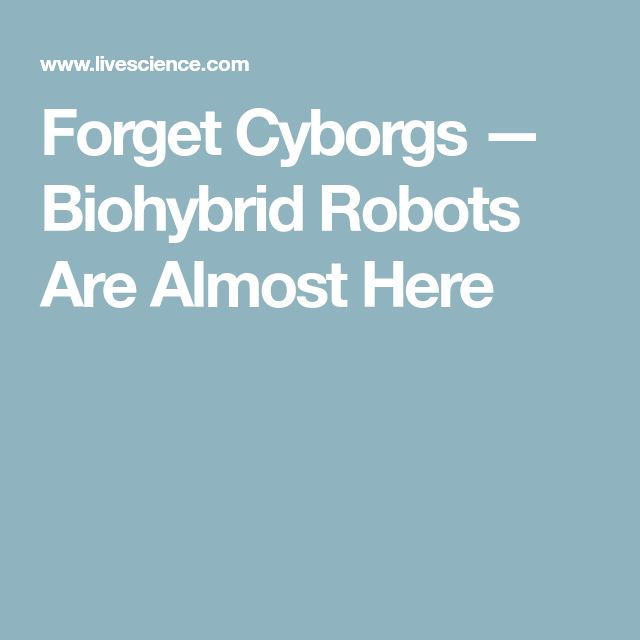 Forget Cyborgs — Biohybrid Robots Are Almost Here