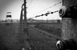 Auschwitz Birkenau and Memorial Museum Guided Tour - DiscoverCracow.eu