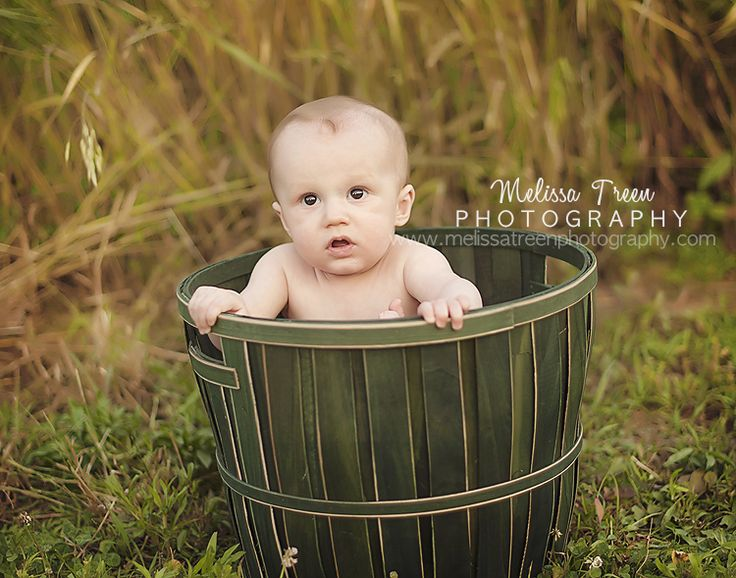 6 month old baby in apple bucket in field of hay farm pictures summerfield nc