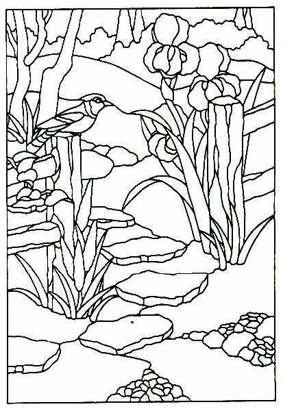 3917 best Coloring Pages images on Pinterest Coloring pages - best of coloring pages adults birds