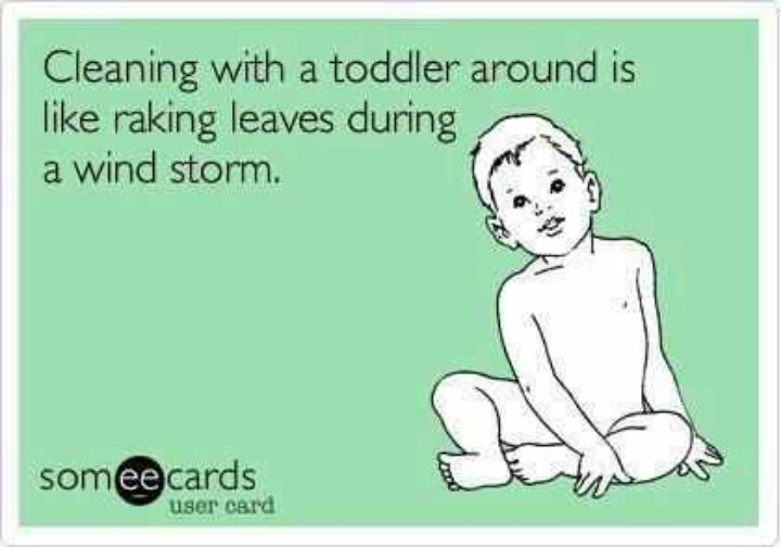 Cleaning with a toddler around d is like raking leaves during a wind storm.
