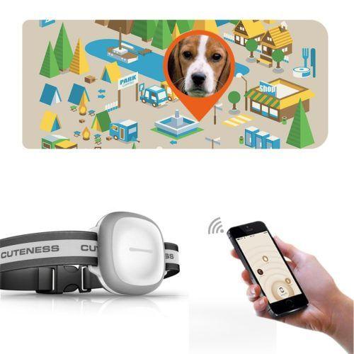 Collier Localisateur GPS Animaux Chien Chat Traceur Surveillance Distance WiFi Necklace GPS Locator Pets Dog Cat top high-tech 2017 year année